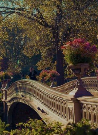 Screen Shot 2018-10-09 at 8.10.29 PM