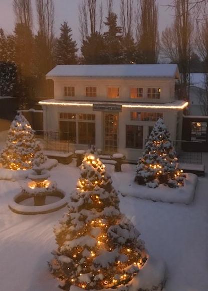 Screen Shot 2018-12-02 at 3.22.10 PM